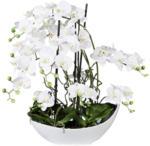 Möbelix Kunstpflanze Orchidee H: 68 cm Weiß