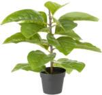 Möbelix Kunstpflanze Bastri
