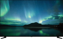 NOKIA 6500 A LED TV (Flat, 65 Zoll/164 cm, HDR 4K, SMART TV, Android 9)