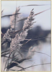 Bild 50/70 cm