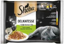 Sheba Delikatesse in Gelee Feine Vielfalt 4-Pack