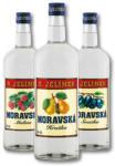 Travel FREE MORAVSKÁ 35-38% 1L - bis 28.01.2021