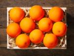 Lidl Bio Orangen