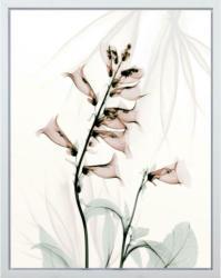 Kunstdruck 40/50 cm