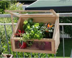 Mini Gewächshaus für Balkon