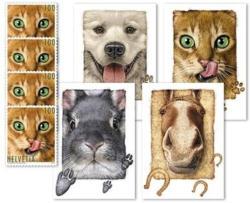 Tierfreunde, Kartenset