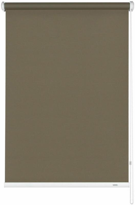 Seitenzugrollo 162x180 cm, mocca