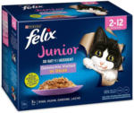 BILLA Felix Junior Fleisch 12er