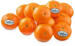 SanLucar Mandarinen gelegt aus Südafrika