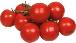 Tomaten - Strauchtomaten