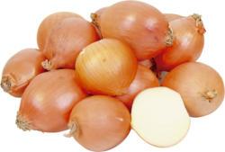 Zwiebel - Gemüsezwiebel