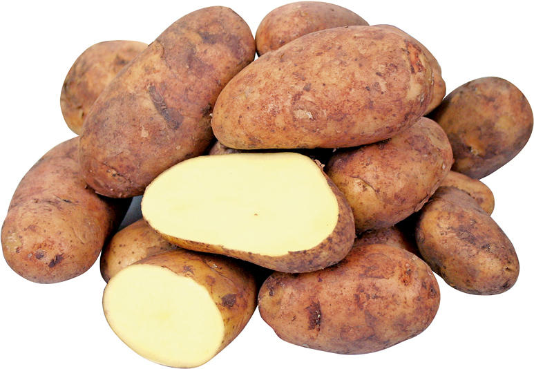 Kartoffeln rot 5 kg Sack