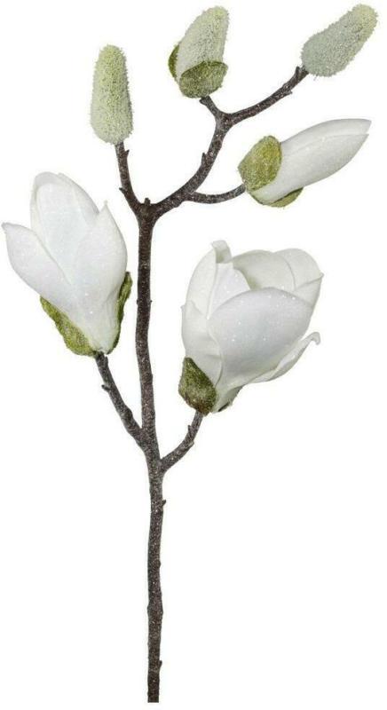 Magnolie L: ca. 43cm
