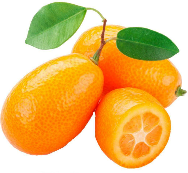 Ja! Natürlich Bio Kumquats aus Spanien