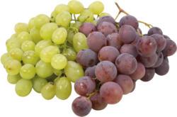 Trauben verschiedene Sorten
