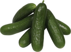 Gurken - Minigurken