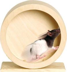 Roue en bois pour hamster Roundy 20cm