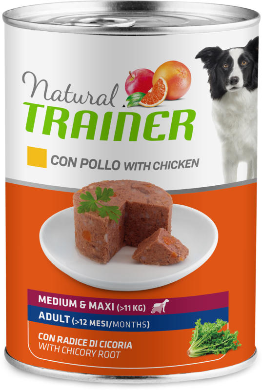 Trainer NATURAL WET Adult Medium Chicken Rice & Aloe Vera 400g
