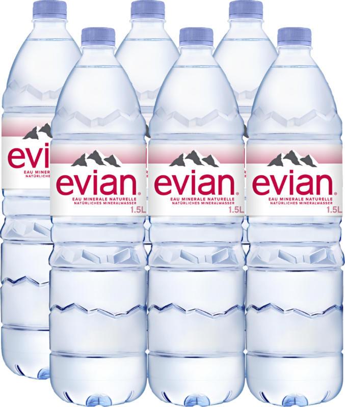 Evian Mineralwasser, ohne Kohlensäure, 6 x 1,5 Liter