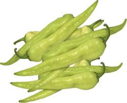 Paprika - Türkischer Paprika