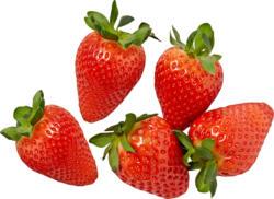Erdbeeren, Spanien 500 g