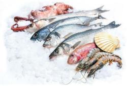 -25% auf alle Iglo Fisch- und Meeresfrüchte-Produkte