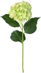 Kunstblume Hortensie, ca. 70 cm (Nur online)