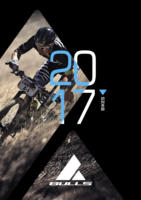2017 BIKES