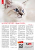 Themenwelten Rund um die Katze